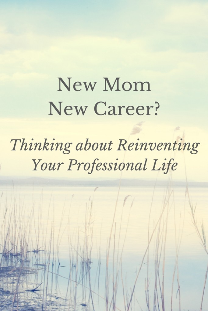 New Mom - New Career-